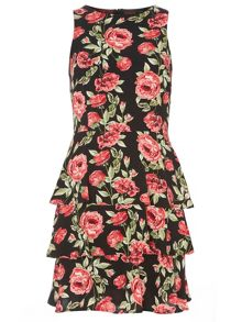 Print Tiered Fit and Flare Dress