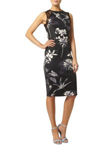 Printed Lace Pencil Dress