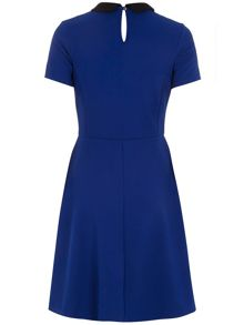 Collar Fit and Flare Dress