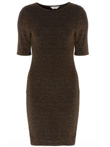 Dorothy Perkins Petite Bodycon Dress