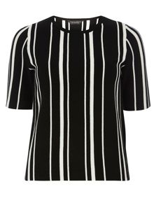 Dorothy Perkins Knitted Tee With Vertical Stripes