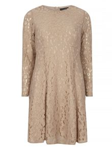 Dorothy Perkins Long Sleeve Lace Fit and Flare Dress