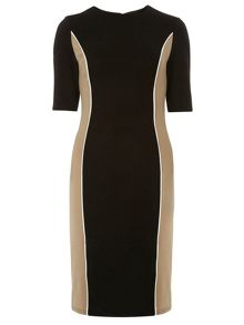 Tall Side Panel Bodycon Dress