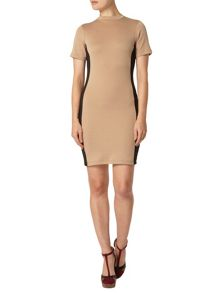Dorothy Perkins Ponte High Neck Tube Dress