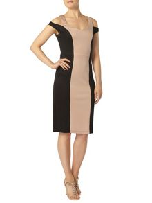 Colour Block Cut Out Pencil Dress