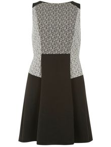 Luxe: Mono Print Ponte Fit And Flare Panel Dress