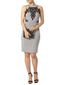 Dorothy Perkins Showcase Halter Neck Lace Bodycon Dress