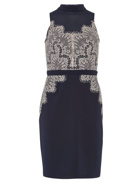 Dorothy Perkins Showcase Lace Detail Bodycon Dress