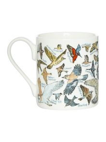 Picture Maps British Birds Mug