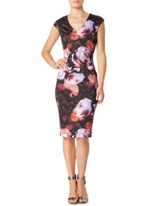 Pied a Terre Rose print dress
