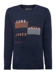 Graphic Crew Neck Pull Over Jumper
