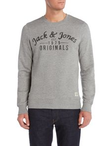 Print Crew Neck Pull Over Overhead