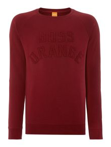 Graphic Crew Neck Pull Over Jumpers