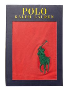 Polo Ralph Lauren Plain Trunks