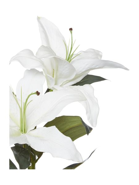 Linea Casablanca Lilly - White