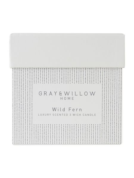 Gray & Willow Wild fern luxury 3 wick candle