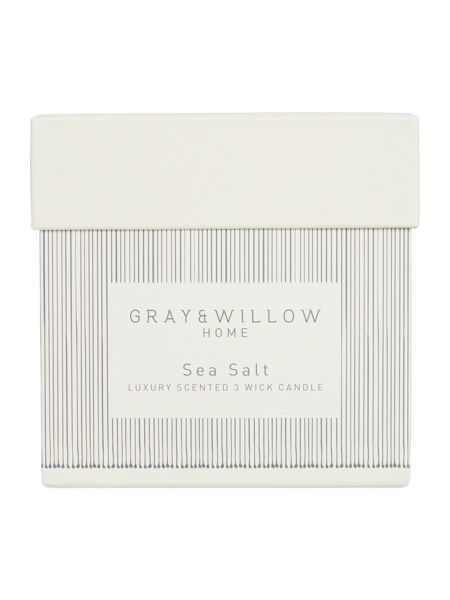 Gray & Willow Sea salt luxury 3 wick scented candle