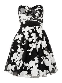 Sweetheart Neck Printed Fit and Flare Dress