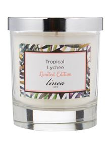 Linea Tropical Lychee Scented Candle
