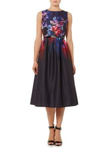 Sleeveless Floral Printed Fit and Flare Dress