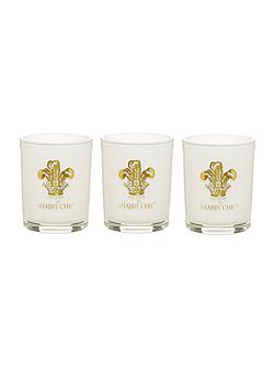 Set of 3 Scented Votive Candles