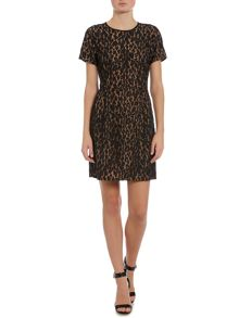 Short sleeve fitted lace leopard dress