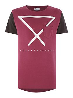 Regular Fit Triangle Graphic T Shirt