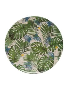 Amazon Melamine Dinne Plate