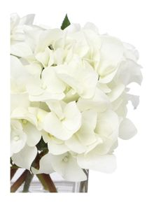 Linea White rose, dahlia and hydrangea arrangement