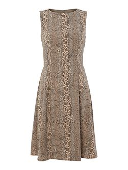 Stasi snake print fit and flare dress