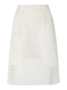 Knee length mesh skirt