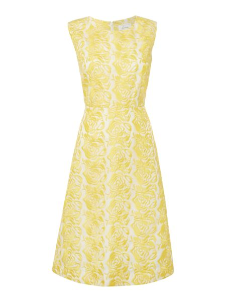 Linea Embroidered lace full skirted dress