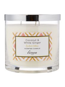 Linea Coconut & Ginger 3 Wick Statement Candle