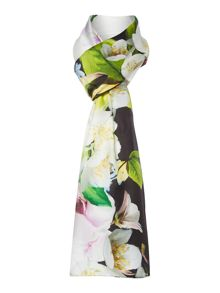 Ted Baker Valorie striped edge floral print wide scarf