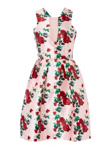 Studio 75 Sleeveless Floral Fit And Flare Dress