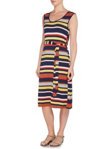 Dickins & Jones Stripe Printed Midi Dress