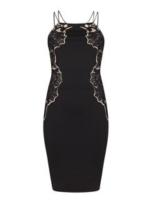Exclusive Lace Applique Sleeveless Dress