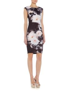 Sleeveless Rose Print Scuba Dress