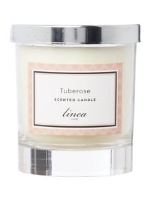 Linea Tuberose Single Candle