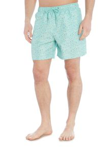 Boardies Mid length kestin hare arial swim print shorts