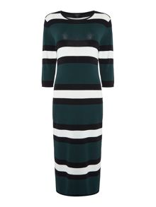 Therapy Brooke Stripe Knit Tube Dress