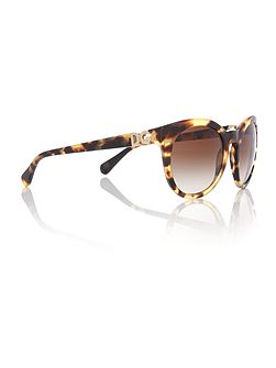 Brown phantos DG4279 sunglasses