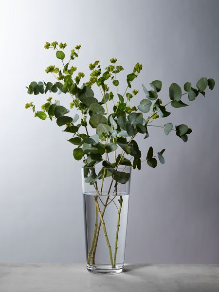 Linea Cylindrical clear glass vase 30cm
