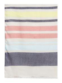 Dickins & Jones Multi Stripe Print Scarf