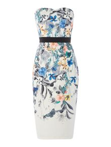 Little Mistress Strapless Midi Bodycon Dress