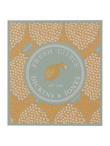 Dickins & Jones Fresh citrus candle