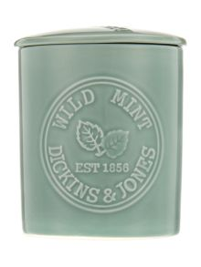 Dickins & Jones Wild mint candle
