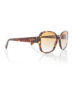 Havana butterfly HC8166 sunglasses