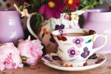 Emma Bridgewater Wallflower Large Teacup & Saucer Boxed