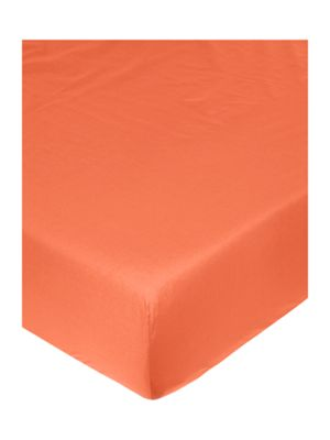 Linea Egyptian cotton fitted sheet